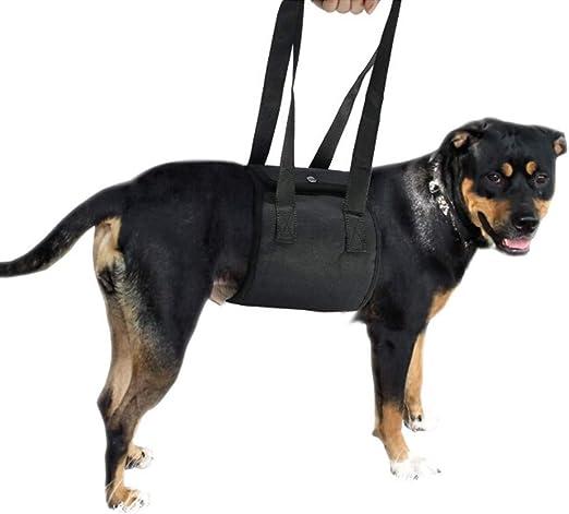 Arnés De Elevación del Perro-Ayuda A Piernas Débiles del Perro ...