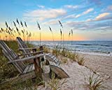 Heritage Puzzle Coastal Sunrise Jigsaw Puzzle (1000-Piece) - Best Reviews Guide