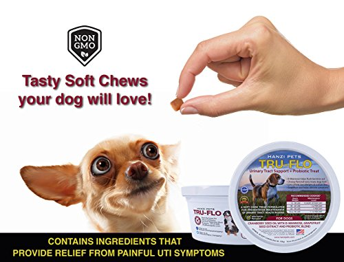 Extra Strength Cranberry Chews for Dogs + PROBIOTICS | For Bladder and Kidney Support | Prevents Painful UTI | Digestive Enzymes for Dogs | Low Allergen | Low Calorie | Sodium Free | Organic