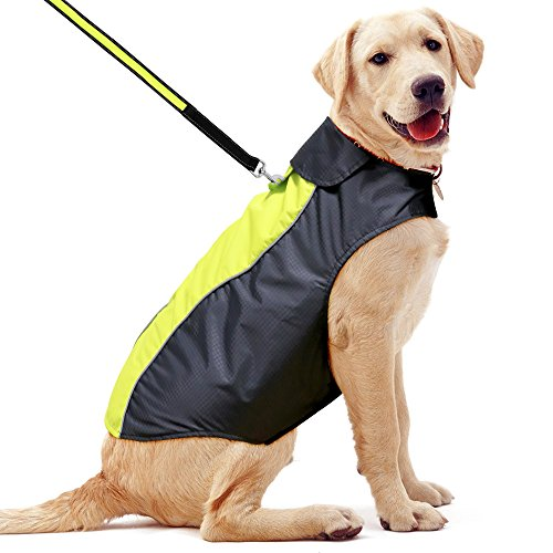 - Ezer High Visibility Dog Raincoat (XXL)