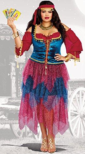 Gypsies Halloween Costumes (Dreamgirl Women's Gypsy Plus Size, Multi,)