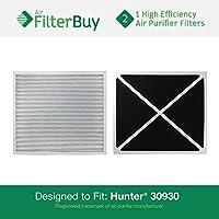 30930 Hunter HEPATech Air Purifier Replacement Filter (2 pack)