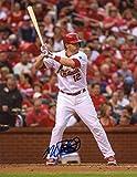 Mark Reynolds Autographed Photograph - St Louis Cardinals At Bat 8x10 W coa - Autographed MLB Photos