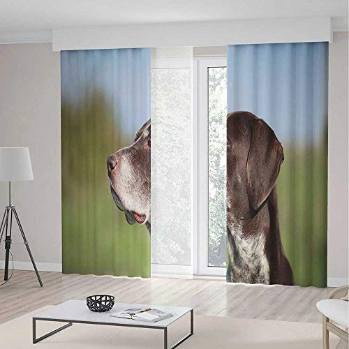 (Hunting Decor Blackout Curtains,German Short Haired Pointer in Wilderness Portrait Photo Kurzhaar Pet Dog,Window Drapes 2 Panel Set, Living Room Bedroom,142 W 106 L,Multicolor)