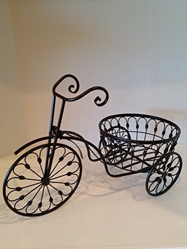 Vintage Tricycle Wrought Iron Plant Stand is the perfect ...