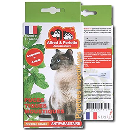 Flea and Tick Spot en gatos, 16 semanas: Amazon.es: Productos para mascotas
