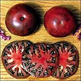 on saleOrganic Black Seaman Tomato 25+ Seeds Rare Heirloom EXTREMELY SWEET&JUICY! 2016