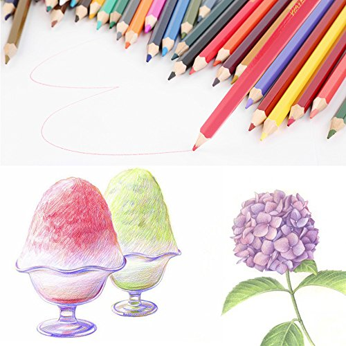 Bayam 36 Assorted Barreled Colors Wooden Colored Drawing Pencils For Secret Garden Coloring Books Adult Kid
