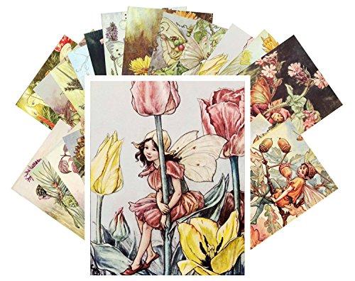 Vintage Postcard Flowers - Postcard Pack 24pcs Cecile Barker Flower Fairy Vintage Book Illustrations