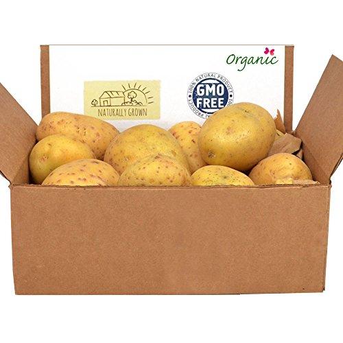 Russet Potatoes Bag - 5
