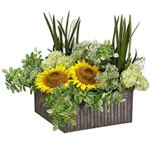 "17"" Hx22 W Sunflower, Succulent & Snowball Silk Flower Arrangement -Yellow/Green 17"