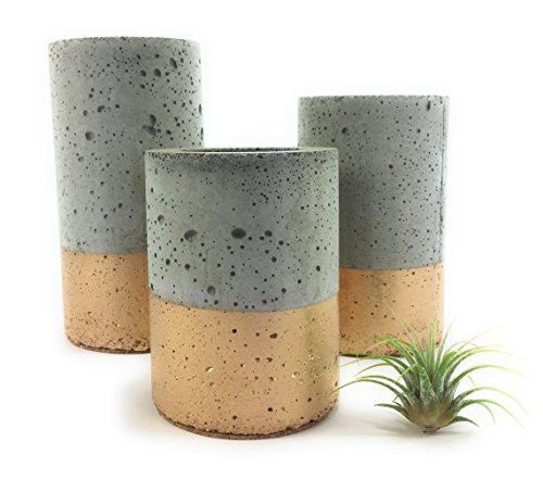 concrete-succulent-planters-air-plant-holders-urba-planters-set-of-3-gold-free-shipping-ready-to-shi
