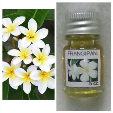 Frangipani (Leelawadee) Flower Scent (1 Piece) and Dok Peep Cork Tree Pure Oil Aroma Scent (1 Piece) Thai Spa Aroma Pure Essential / Fragrance Oil for Spa Bath, Candle Lamp Burner, 5ml by M.G.SHOP