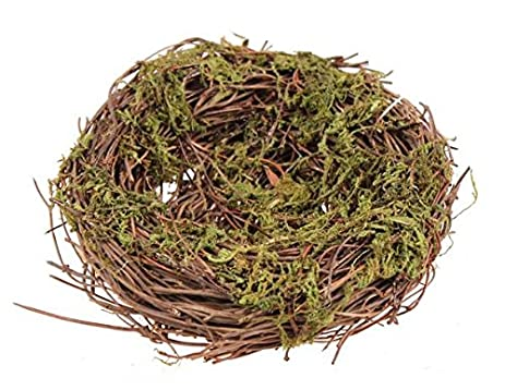 Natural Bird Nest (5u0027u0027 Angel Vine/moss ...