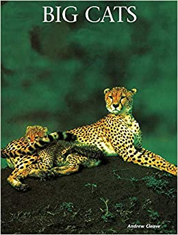 Big Cats PDF Descargar