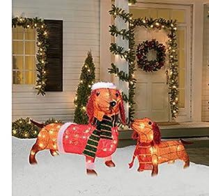 Amazon.com : Light-Up Holiday Dachshund Family, 2-Piece ...