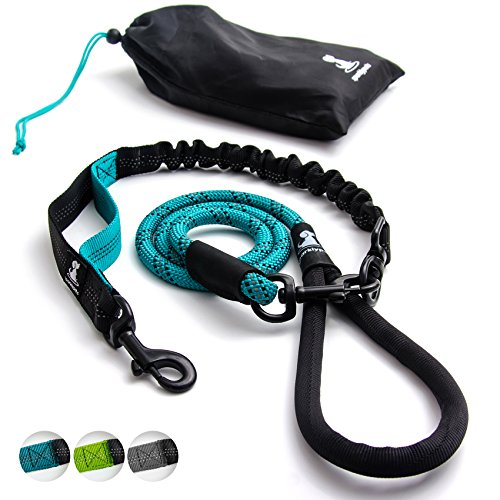 FLASH SALE | Heavy Duty Rope Leash for Large and Medium Dogs with Anti-pull Bungee for Shock Absorption - No Slip Reflective Leash for Outside  Suitable for Extending Dog Training and Walking - Teal