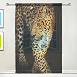 WOZO Custom Leopard Portrait Sheer Panel Pair Curtains 55″x78″, 1-Piece Animal Black Modern Window Treatment Panel Collection for Living Room Bedroom Home Decor Review