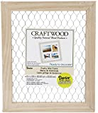Darice 9190-9633 Unfinished Frame with Chicken Wire, 8 by 10-Inch