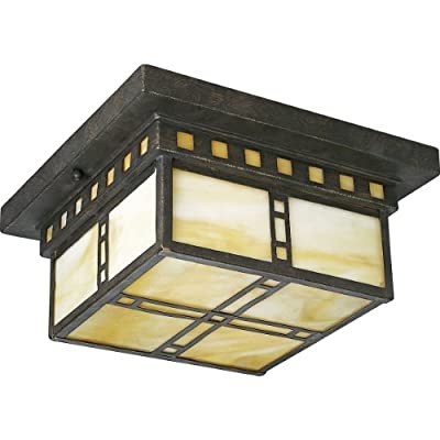 Progress Lighting P3513-46 Arts and Craft 2-Light Close-To-Ceiling with Honey Art Glass, Weathered Bronze