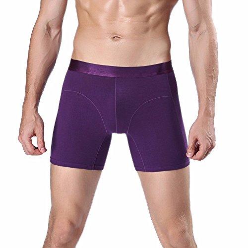 Ghazzi Mens Underwear Boxer Briefs - Cotton Boxer Brief Underwear Knickers Shorts Panties (Purple, Large)