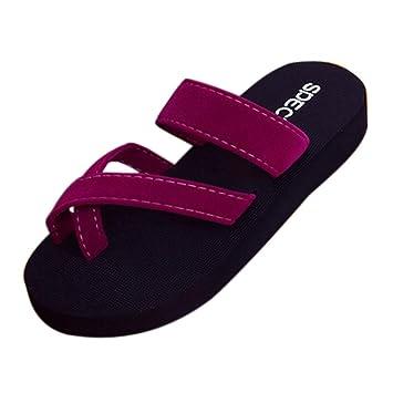 3b5a29b9005b Summer Beach Slipper - Womens Summer Flip Flops Casual Slippers Toe Ring  Platform Wedge Sandals Non
