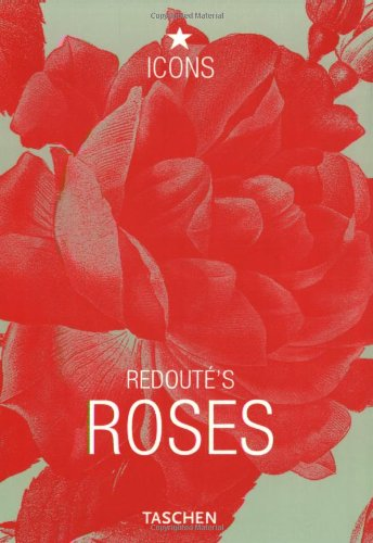 Redoute Roses - 1