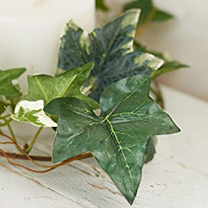 Factory Direct Craft 12 Feet of Artificial Mixed Ivy Vine Garland for Home Decor, and Displaying 1