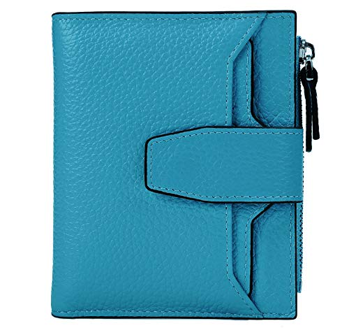 AINIMOER Women's RFID Blocking Leather Small Compact Bi-fold Zipper Pocket Wallet Card Case Purse(Lichee Sky ()