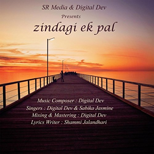 Zindagi Ek Pal for sale  Delivered anywhere in USA