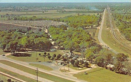 Leesburg Florida Michigan Trailer Park Birdseye View Vintage Postcard - Leesburg Stores