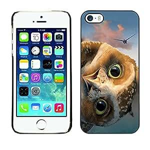 - Owls Owl Cute Pattern - - Monedero pared Design Premium cuero del tir¨®n magn¨¦tico delgado del caso de la cubierta pata de ca FOR Apple iPhone 5 5S Funny House