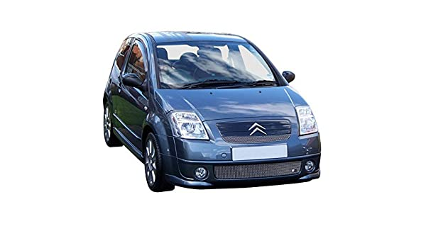 Zunsport 03 - Rejilla para Coche (diseño de Citroën C2): Amazon.es: Coche y moto