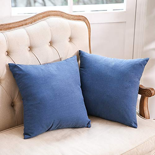 LBANI Decorative Throw Pillow Covers 18 x 18 Inch, Blue Velvet Soft Pillow Cases, Home Decorations for Bed Chair Couches and Sofa, Pack of 2 Pillowcases