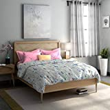 Dreamline Misty Morning Grey Double Bedsheet with 2 Pillow Cover Set (DSN-10)