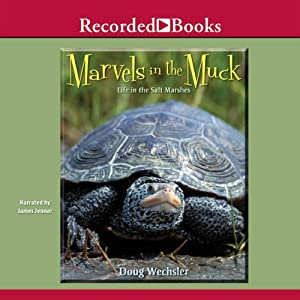 Marvels in the Muck Audiobook