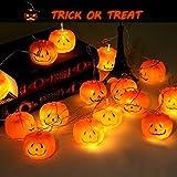 Muscccm Halloween Pumpkin Lights, 20 LED Pumpkin