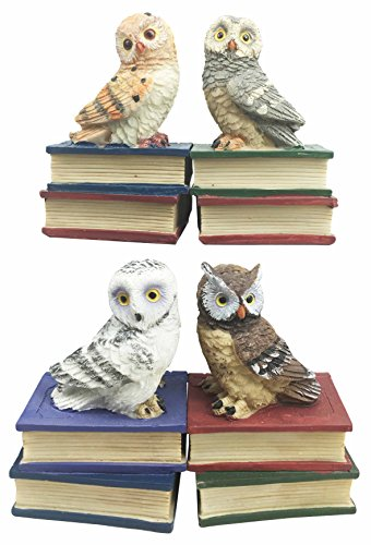 Wisdom of The Forest Bibliography Nocturnal Owls Sitting On Books Figurine Owl Set Miniature Collectibles