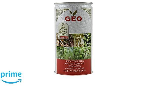 Geo Chia Semillas para germinar, Marrón, 9.9x9.9x18 cm ...