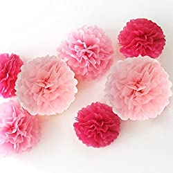 Zicome 12 Piece Tissue Paper Flower Pom Poms for Decorations,10 Inch, 12 Inch, 14 Inch, (Pink)