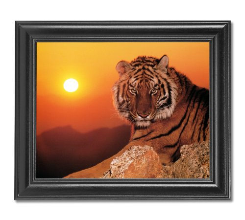 Home Interiors Wall Pictures Amazoncom