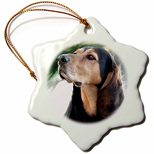 3drose Black and Tan Coonhound Snowflake Porcelain Ornament, 3-Inch (Coonhound Ornament)