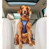 Solvit Products 62406 Deluxe Car Safety Harness Blue, Large/45-85Lbs