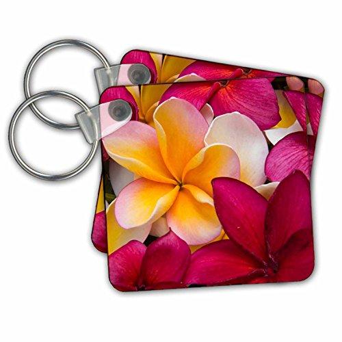 5 Llavero 7 de 2 paquete 259252 3drose kc cm 7 amarillo x Plumeria 1 rojo y Hawaii Maui USA 5 PZzq0
