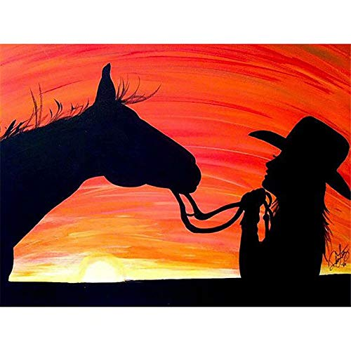 Diy 5D Diamond Painting By Number Kit For Adult, Full Drill Diamond Embroidery Kit Home Wall Decor- Woman And Horse Silhouette (Painting Silhouette Horse)