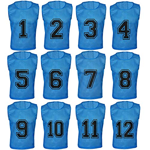 Athllete Set of 12- Scrimmage Vest/Pinnies/Team Practice Jerseys with Free Carry Bag. Sizes for Children, Youth, Adult and Adult XXL (Azure Blue Numbered, Large)