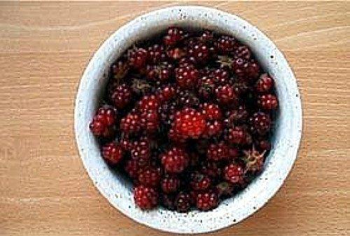 - Hardy Arctic Groundcover Raspberry - Rubus - Delicious-Sophia/Valentina-2 Plants