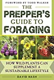 img - for The Prepper's Guide to Foraging: How Wild Plants Can Supplement a Sustainable Lifestyle book / textbook / text book