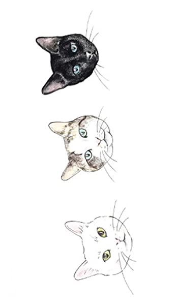 9fe185325 Amazon.com : Fashion Summer Animal Fox Cat Fllower Temporary Tattoos  Graphics (Colorful-6) : Beauty