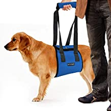 Dog Lift Harness Sling | Large ACL Brace for Rear Leg Support of Old K9 | Help Em Up Carrier Knee Limping Joint Hock Hip Injuries Arthritis Poor Mobility Veterinarian Approved Rehabilitation Recovery